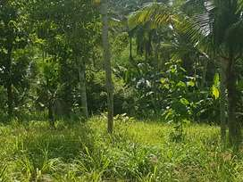 Land for rent @ Trivandrum
