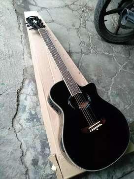 Gitar akustik elektrik emansipasi