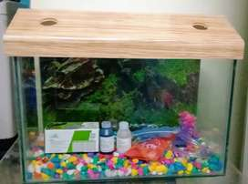 New Fish Tank With Accessories