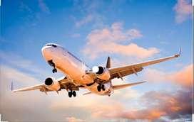 Urgent hiring for ticketing executive in dehradun airport