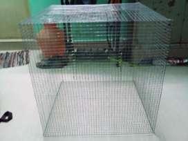Birds cage (New)