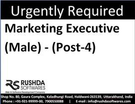 Required : Marketing Executive