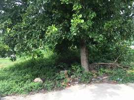 Plot for sale in Miyapur