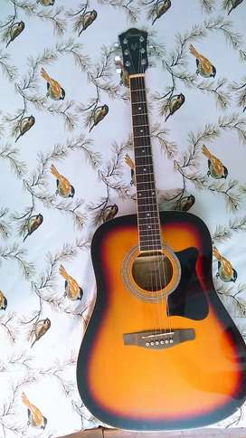 Ibanez Acoustic Guitar + Ibanez Custom Pickups