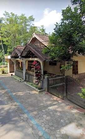 Rumah murah luas tanahnya