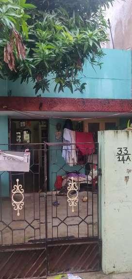 House for rent in padi korattur