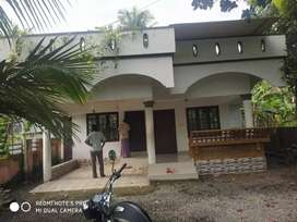 House Apartment Rent Family Bachelors Perumbavoor Marampilly Onnammile