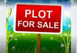 I want to sell my 5 Marla plot in mehria town