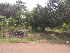 Tanah Untuk industri Pinggir Jalan Dekat Gerbang Tol Kalijati