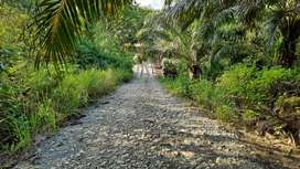 Bismillah lahan 4 hektar Semoi dua Pusat Ibukota Sepaku PPU RING 1