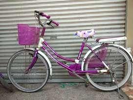 Sepeda remaja Jieyang