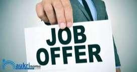Sales Executive for Himayatnagar