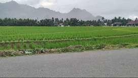 Tanah strategis Bungus