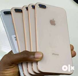 Buy Iphone at very economical price