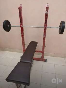 3 in 1 gym Bench