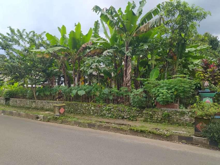 Tanah disewakan luas 476m di jalan raya owabong