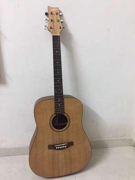 Guitar - ASHTON D20 Acoustic Guitar