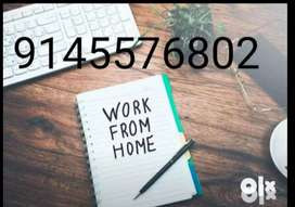 We will providing genuine online job