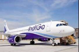airlines job in indigo airlines