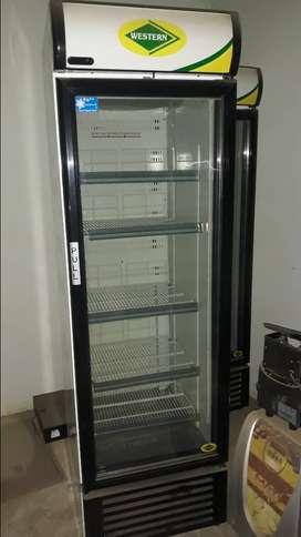 Western Deep Freezer Vertical 500Ltr Capaci