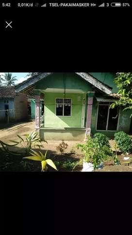 Rumah kampung Murah Halaman luas kota madya