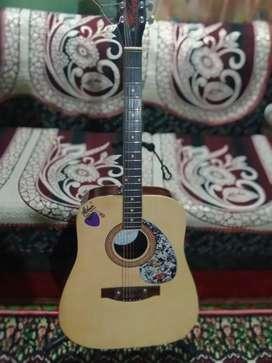 Hobner Guitar