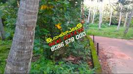 Near KOVALAM,10 Cents Lorry Plot For Immediate Sale...SudheerJeeS...