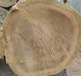 Teak wood seller