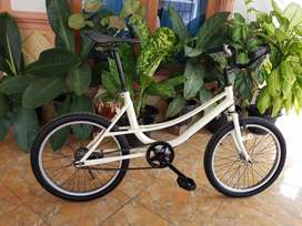 Minion Bike, Minitrek, Sepeda mini