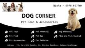 For sell of pet items and food at Gandhinagar
