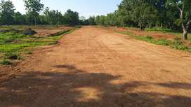 "In KURAPALLI, Revidi Padmanabam Road, (Thagarapuvalasa) "" OPEN PLOTS """