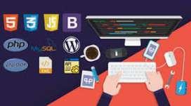 Hire Web Developer & Design