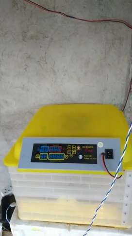 Incubator with battery