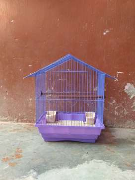 Cage parrot birds