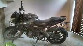 Bajaj Pulsar brand new bike