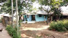 Rumah di perkampungan