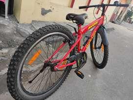 Avon Dorada 26 Bycycle