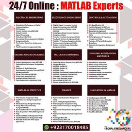 MATLAB Python and Simulink Simulations Experts Consulting Services 247