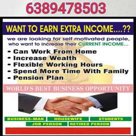 MIS Executive/S Required (Work from Home