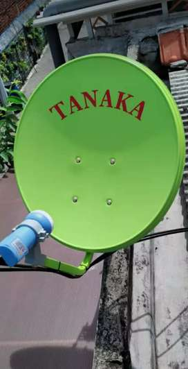 Parabola paling murah kwalitas HD gajah Mungkur