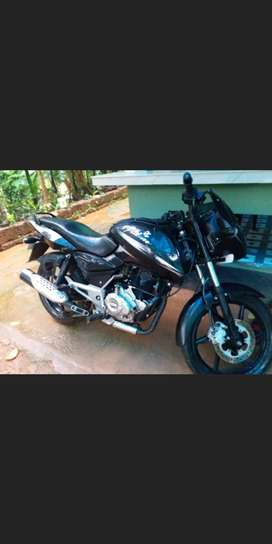 Pulsar 150. Black color. Single owner