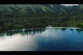 jual cepat tanah 47hk perkebunan kelapa,cocok  usaha pertambangan batu