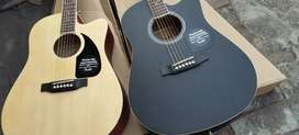 Fender Acoustic Guitar with bag pick strings delivery.