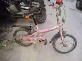 BSA flora pink cycle