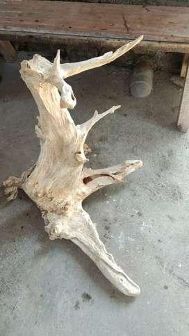 Pajangan antik akar kayu jati erosi alami