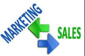 we are looking for marketing executives