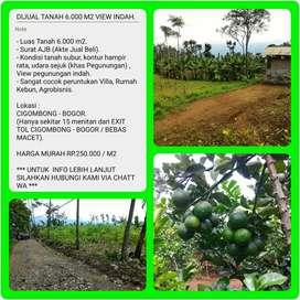 Dijual Tanah Kebun Jeruk dengan View Sangat Indah, Luas 6030m2