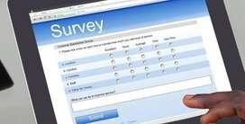 Survey Executive
