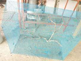 Bird cages sale