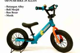 Odessy Pushbike Alloy